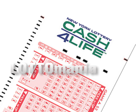 Cash4Life lottery software
